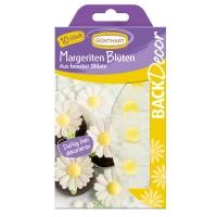 Oblaten-Margeriten-Blüten
