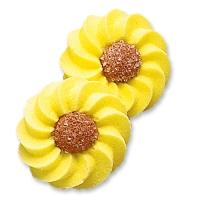 100 St. Margeriten gelb