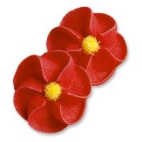 Feuerblumen, rot