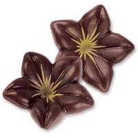 Schokoladen-Blüten