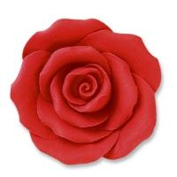 Rosen, rot, groß