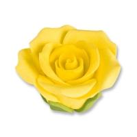 Rosen, gelb, mittel