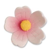 60 St. Feinzuckerblumen gross rosa