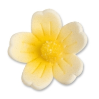 Blumen, gelb, groß