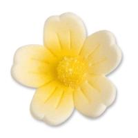 60 St. Feinzuckerblumen gross gelb