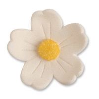 Blumen, weiß, groß