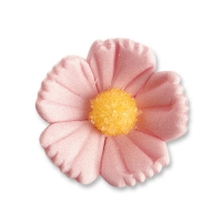 96 St. Feinzuckerblumen mittel rosa