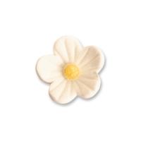 96 St. Feinzuckerblumen klein weiss