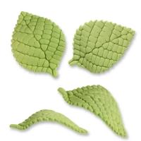 Blätter, groß