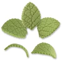 Blätter, mittel