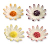 Feinzucker-Blumen, weiß sortiert