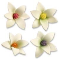 Feinzucker-Blumen, weiß, sortiert