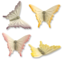 24 St. Feinz.-Schmetterlinge,sort.