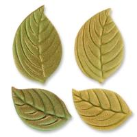 100 St. Blätter  Antik , groß, klein