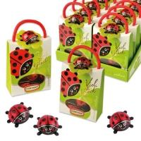 Käfer-Täschchen gefüllt mit Schoko-Käfern