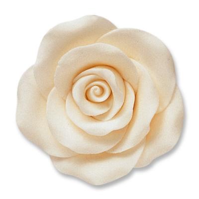 Rosen, weiß, groß