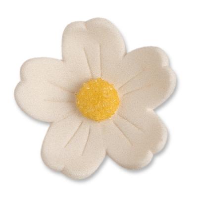 60 St. Feinzuckerblumen gross weiss